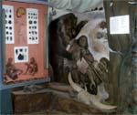 Экспозиция зала эпоха камня